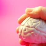 מדיטציה מתקנת תאי מוח