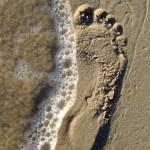עלבונות על חול וברכות על אבן