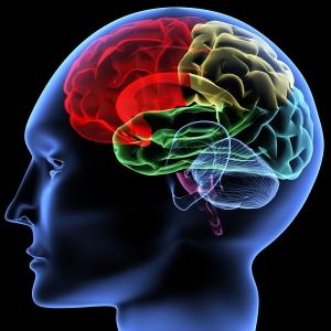מחקר חדש מוכיח: הכל בראש - מחשבה שלילית גורמת למחלה