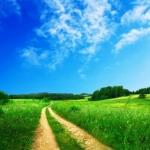 איך להעז ללכת בעקבות השמחה ולקראת הייעוד הגדול שלך