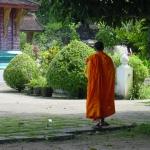 שיעורי חיים בלתי נשכחים מפי השף המפורסם שהפך לנזיר