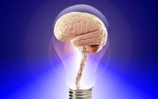 איך לגרום למוח שלכם לייצר תאי עצב חדשים